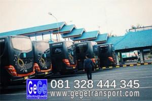 Bus wisata terbaru 2015 Adiputro yogyakarta ternyaman gambar terbaik 2014 jetbus gege transport jogja pariwisata ketapang gilimanuk