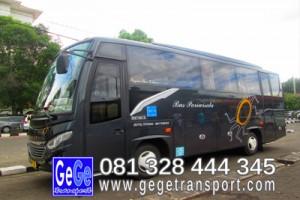 Bus wisata terbaru 2015 sedang mikro yogyakarta ternyaman gambar terbaik 2014 gege transportasi jogja paket pariwisata termurah
