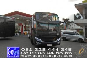 Gege transport yogyakarta bus pariwisata hdd bus hitam terbaru 2017 terbaik jakarta bandung bali lombok surabaya nyaman city tour jetbus interior wisata gegetrans busgege shd