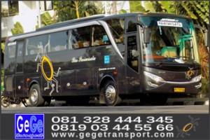 bus wisata gege transport imogiri bantul yogyakarta terbaru terbaik 2017