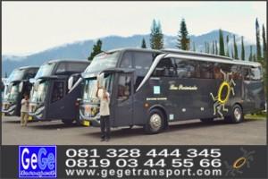 bus pariwisata yogya interior mewah bersih hdd shd terbaru 2017