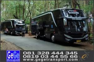 gege transport bus pariwisata yogyakarta terbaik terbaru 2017
