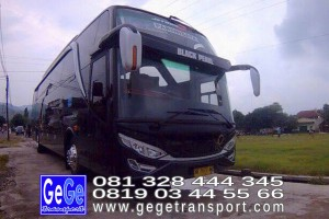 gege transport hdd tahun 2017 2016 bus pariwisata terbaik di yogyakarta nyaman terbaru setra adiputro murah ter besar shd black Pearl
