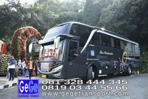gege transport hdd tahun 2017 2016 bus pariwisata terbaik di yogyakarta nyaman terbaru setra adiputro murah ter besar solo semarang shd black Pearl