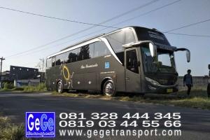 gege transport hdd tahun 2017 2016 bus pariwisata terbaik di yogyakarta nyaman terbaru setra adiputro murah ter besar solo semarang shd black Pearl purwokerto
