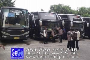 gege transport hdd tahun 2017 2016 bus pariwisata terbaik di yogyakarta nyaman terbaru setra adiputro murah ter besar solo semarang surabaya bali jakarta bandung shd black Pearl