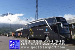 gege transport hdd tahun 2017 2016 bus pariwisata terbaik di yogyakarta nyaman terbaru setra adiputro murah ter besar solo semarang surabaya bali shd black Pearl