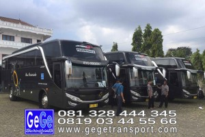 gege transport hdd tahun 2017 2016 bus pariwisata terbaik di yogyakarta nyaman terbaru setra adiputro murah ter besar solo semarang surabaya shd black Pearl