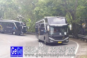 gege transport konvoi hdd tahun 2017 2016 bus pariwisata terbaik di yogyakarta nyaman terbaru setra adiputro murah ter besar shd black Pearl